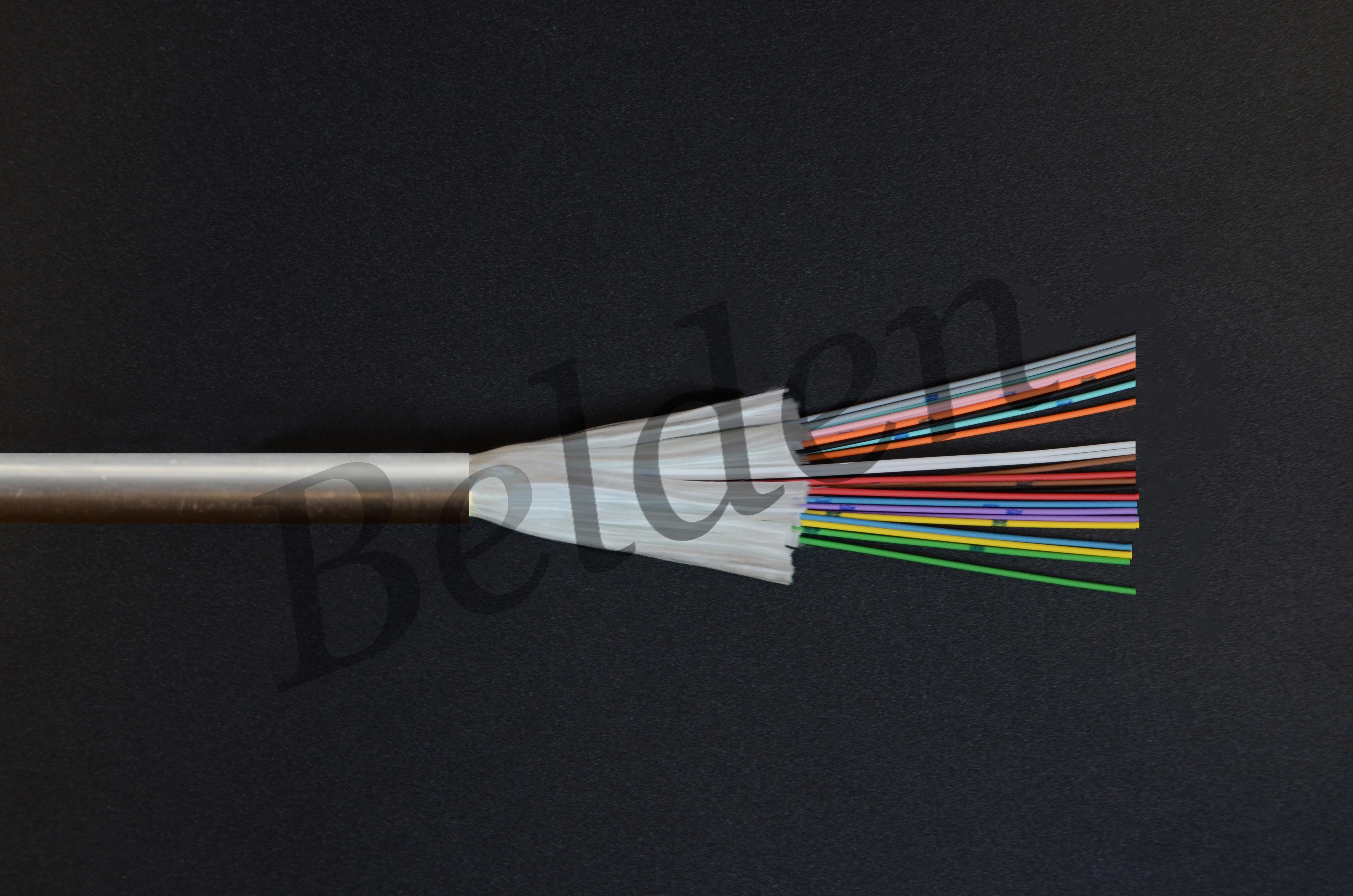Câble Belden int/ext anti rongeurs renforcé 4 FO 62,5/125 OM1 LSZH, à structure serrée 900µm